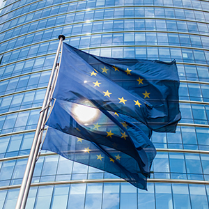 Do I need to set up an EU subsidiary?